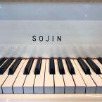 6013885-sojin-dg-1-5-1-ivory-polish-2