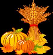 Fall pumpkin image